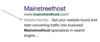 Mainstreethost Google Result