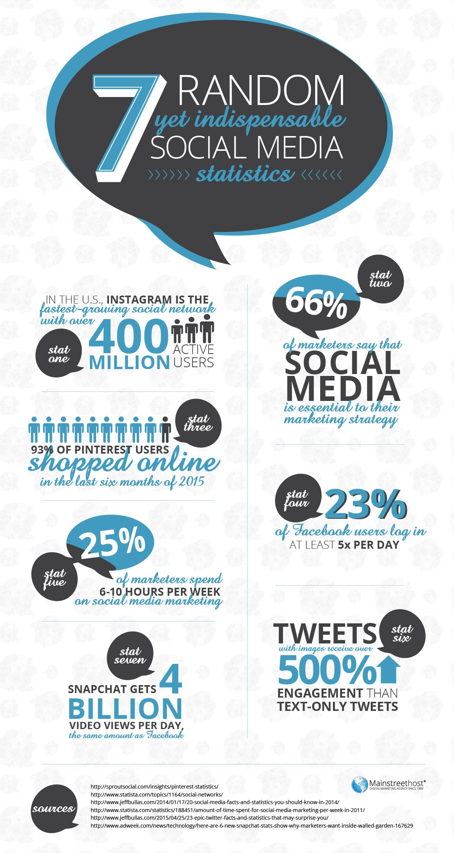 Social Media Stats Infographic
